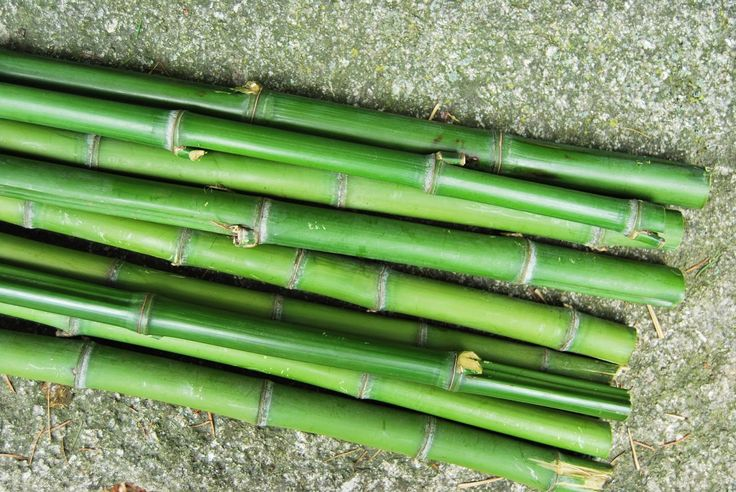 Troncos, rotuladores y chapas: reto DIY.  Escalera de bambú que sirve de toallero en la piscina.  DIY bamboo stair for towells  on the pool