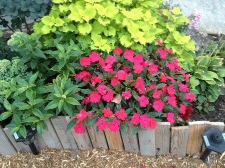 wood edging at Heathers 450x337 Easy garden edging ideas (and more from my gardening friends)