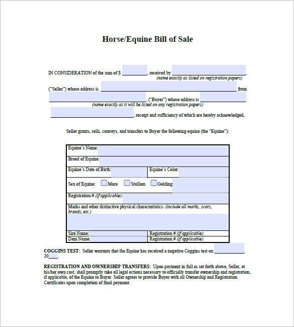 Bill Of Sale Horse Horses For Sale Horses Bills
