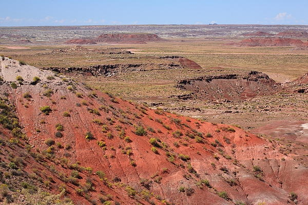 Painted Desert of Arizona. Barren desert landscape in Petrified Forest National Park, a must see along old Route 66.
