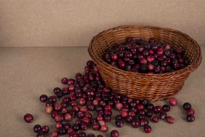 Three Health Benefits of Cranberries # Cranberry #Basket #Wicker Basket #Fruit Basket #healthy eating #Health #Nutrition #Nutritious #Health # Christmas # Christmas food # food #Fruits and vegetables #Vegetarian # Red #Brown #photo #photography #image #picture #still life #still life photography #still life photo #Blog #weblog #cool #beautiful