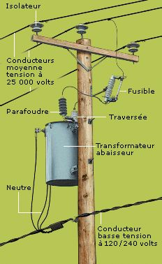 Diagram of ponents found on a distribution pole