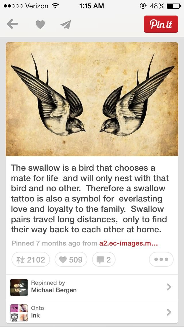 how swallows may relate to harrys chest piece