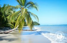 Why You Need To See Cahuita National Park- One of the most beautiful places in Costa Rica