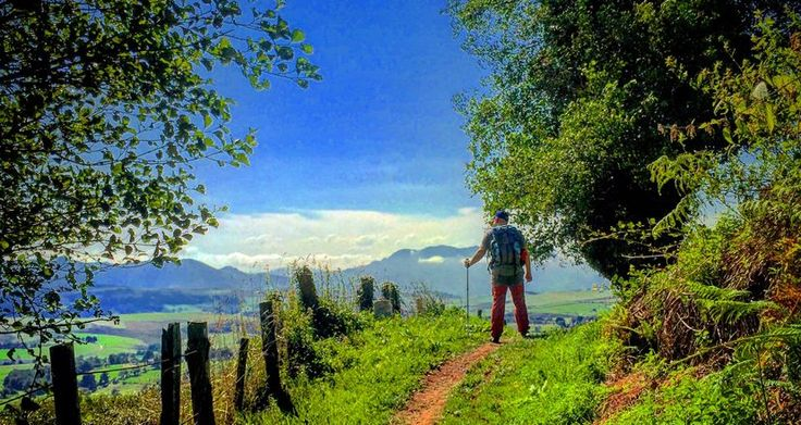 Donde nació el Camino de Santiago
