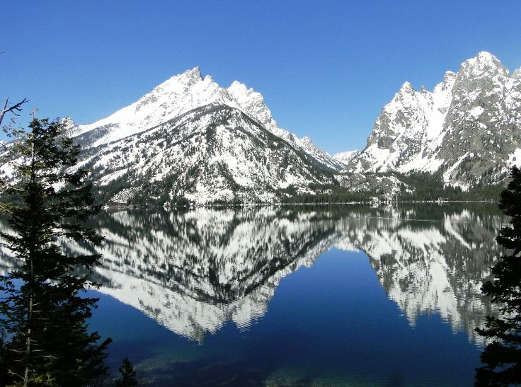 Yellowstone Vacation Packages | Jackson Hole Vacation Packages | GTLC - Grand Teton Lodge Company