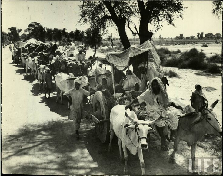 essay on partition of india and pakistan