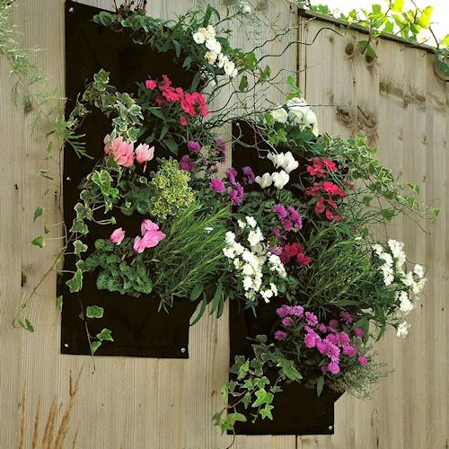 Een verticale tuin aan de schutting maken? Dat kan nu heel gemakkelijk.