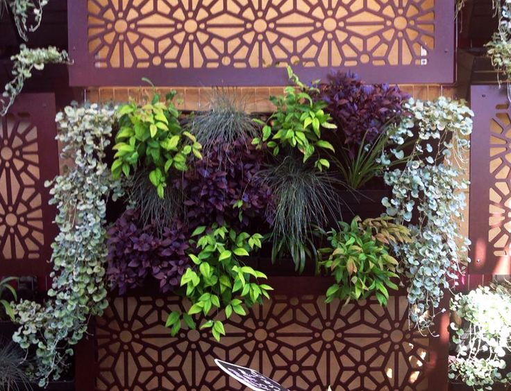 102 best garden screens  u0026 diy images on pinterest