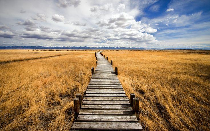 Moje pravdy - Pravda o poslání, úkolech a smyslu života na zemi