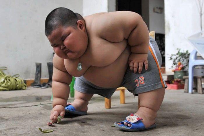 sisman-bebek-japon-cocuk.jpg (700×466)