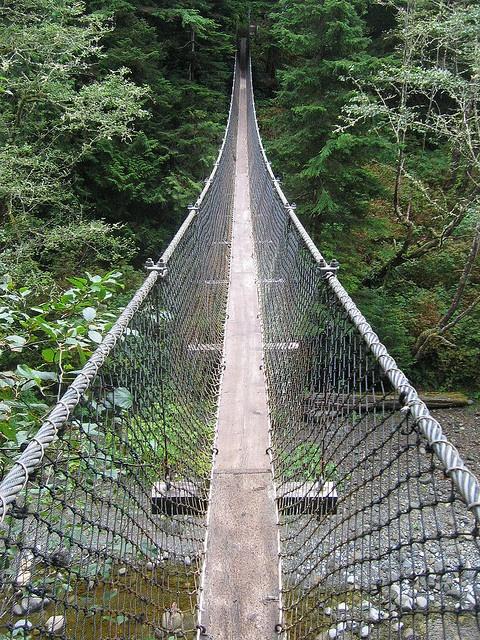 West Coast Trail - Hanging Bridges