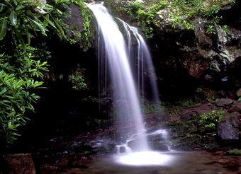 The Smoky Mountains Grotto Falls, the falls you can walk behind.