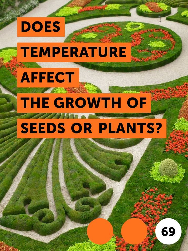 Does Temperature Affect The Growth Of Seeds Or Plants Aloe