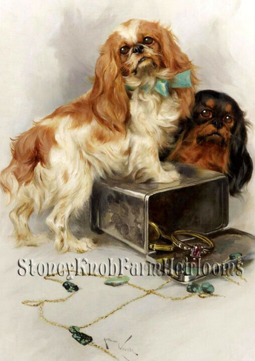 Cavalier King Charles Spaniel ~ Dogs ~ DIY Counted Cross Stitch Pattern