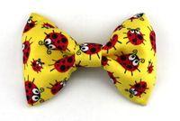 Noeud papillon Ladybug http://www.hopdog.fr/noeuds-papillon-pour-chien/noeud-papillon-ladybug,fr,4,NP30.cfm
