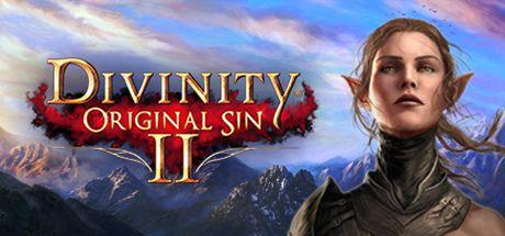 Divinity: Original Sin 2 on Steam