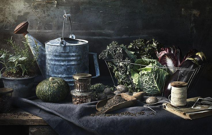 lebensmittel styling tami hardeman | foto greg dupree | Stütze, die ginny Zweig anredet