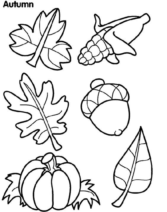 FREE Crayola Autumn Leaves coloring page... AND TONS MORE ...