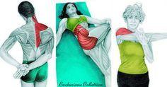 Come fare stretching: 36 immagini per capire quale muscolo stai distendendo.