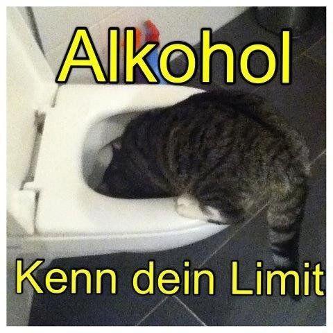 Alkohol! LocoPengu - Why so serious?