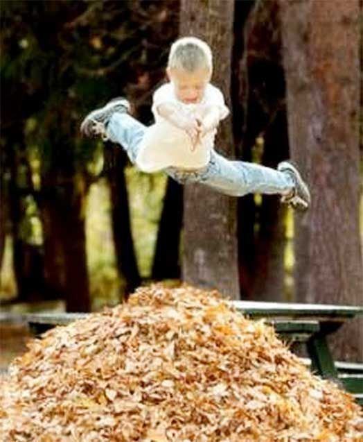 Nature Play - Risk and Reward. Don't just focus on risk assessment think about risk-benefit assessment.