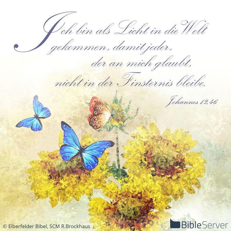 Nachzulesen auf BibleServer | Johannes 12,46