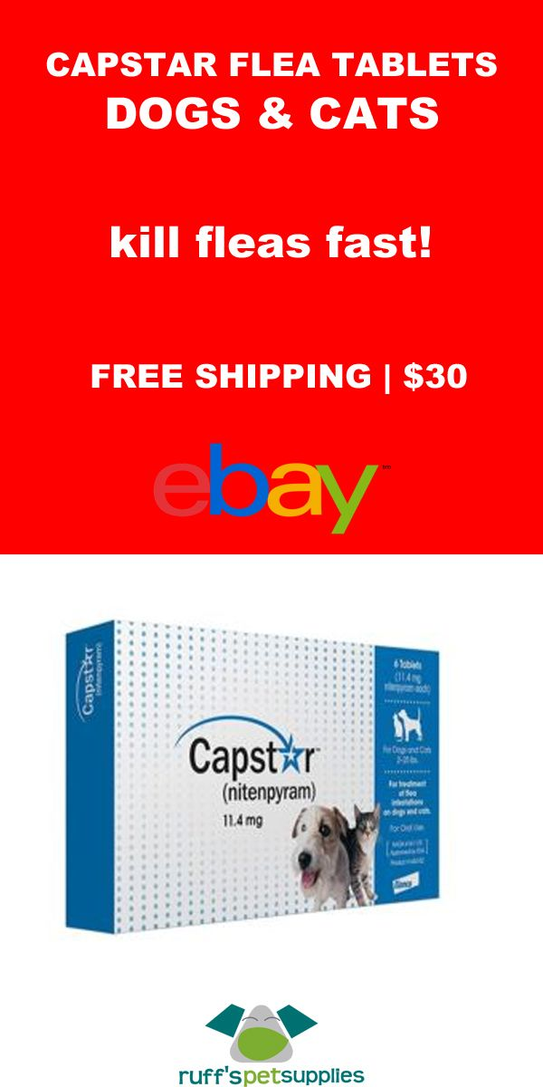 Capstar Tablets Kill Adult Fleas And Are Indicated For The Treatment