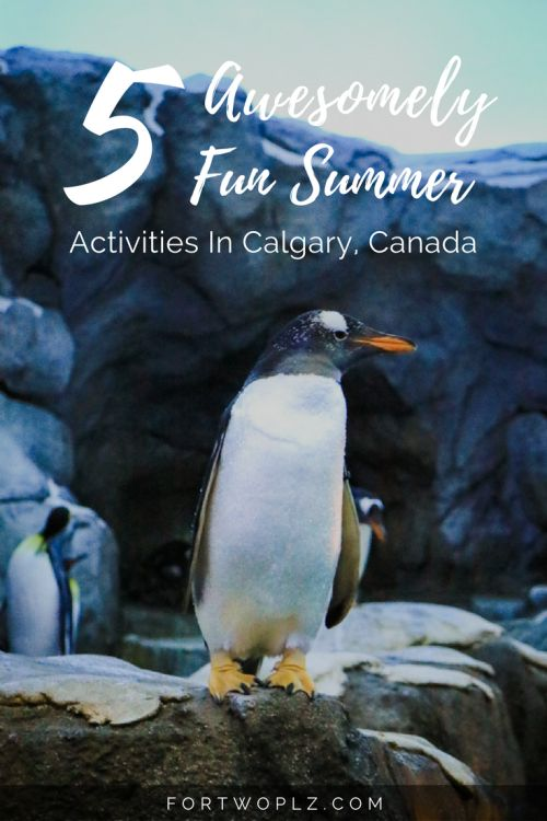 Travel Canada   Alberta   Calgary   Summer   Adventure