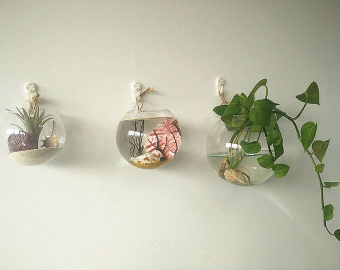 This large opening bowl glass wall terrarium is handmade with high boron silicon glass,clear and light.It can be wall hanging with wall nail applied to wall planter vase for wall decoration/house ornament  *You only received 4 empty glass bowl and white wall hooks and 2mm hemp rope;Please check all of the air bubbles and plastic wrap,look for the wall hooks when open your parcel.  Glass Bowl Dimensions: 3.77 Maximal width(opening mouth)., 3.2 Height(base to opening).,Total tall is 4; Hav...