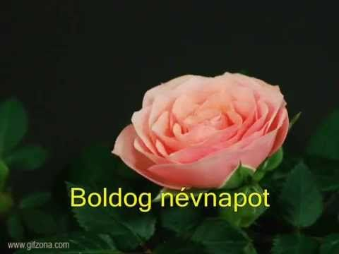 BOLDOG NÉVNAPOT - BETHOVEN - FÜR ELISE