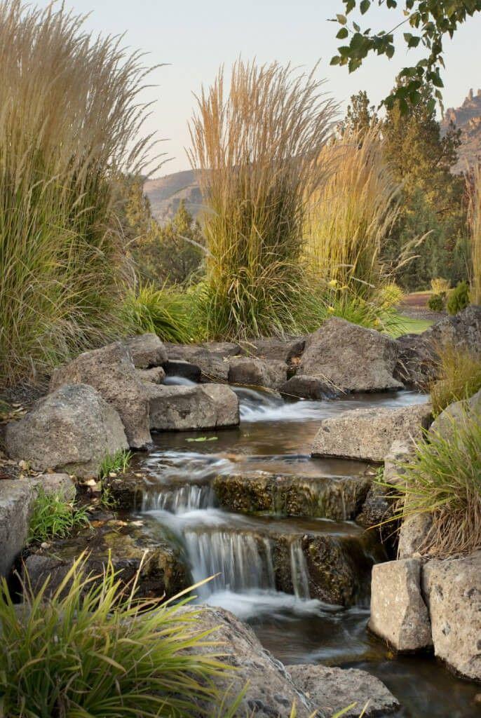 Die besten 25+ Teichzubehör Ideen auf Pinterest Diy terrarium - teich wasserfall modern selber bauen