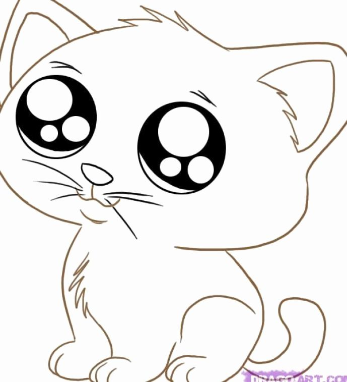 Cute Baby Animal Coloring Pictures Inspirational Cute Cartoon Animal Coloring Pages Cartoon Colori In 2020 Animal Coloring Pages Kittens Coloring Animal Coloring Books