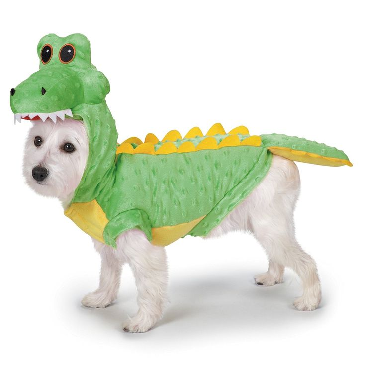 Casual Canine Casual Canine Crocodile Costume for Dogs, 8' XS ** Read more