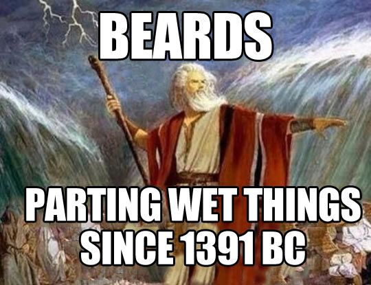 Beards, parting wet things since 1391 BC