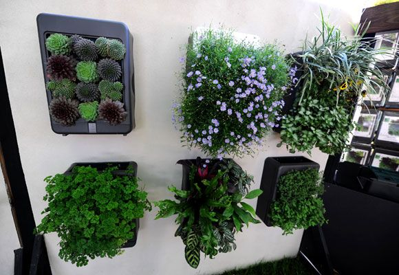 The VertiScape System is a fully enclosed living wall garden that is ready to mount to your vertical space. From Living Holmes Design.