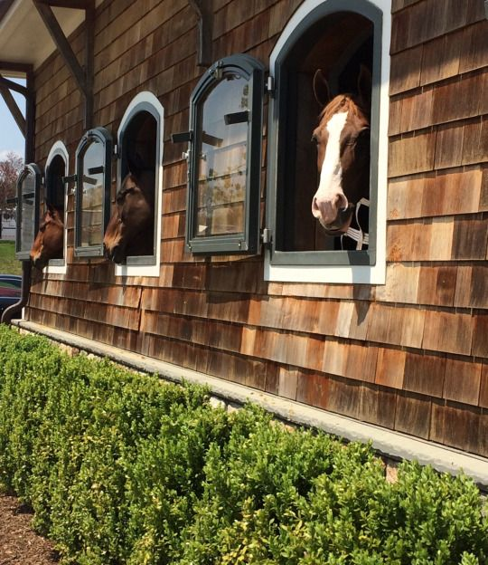 Shingle style barn. Such a magnificent horse stable for 3 horses