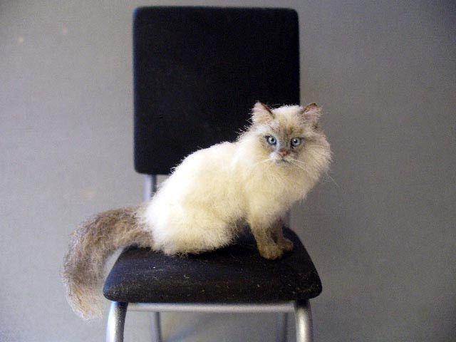 scratch cat girl