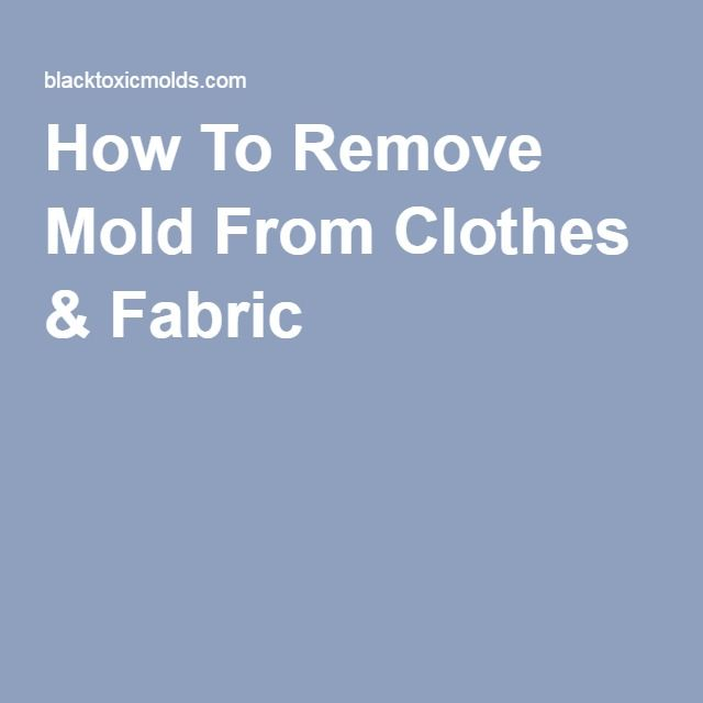 How To Remove Mold From Clothes & Fabric