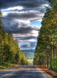 Route to Flagstaff Arizona - I have only been here once before and loved it.  It reminds me a little of Seattle but in the southwest.  Very laid back and beautiful.