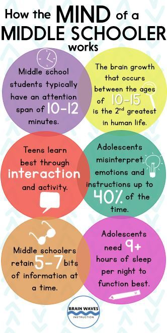 Update - Infographic - Middle School Mind
