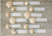 """DIY: """"she sells seashells"""" for you to create fabulous beach-themed placecards !  Use store bought or hand-gathered shells from the beach to create these.  Glue on a ribbon with the guest's name.  Photo courtesy of Real Simple Weddings."""