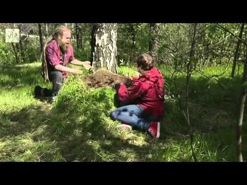 Ulos luontoon - Kevätseuranta (5/5) Nisäkkäät 2014 - YouTube