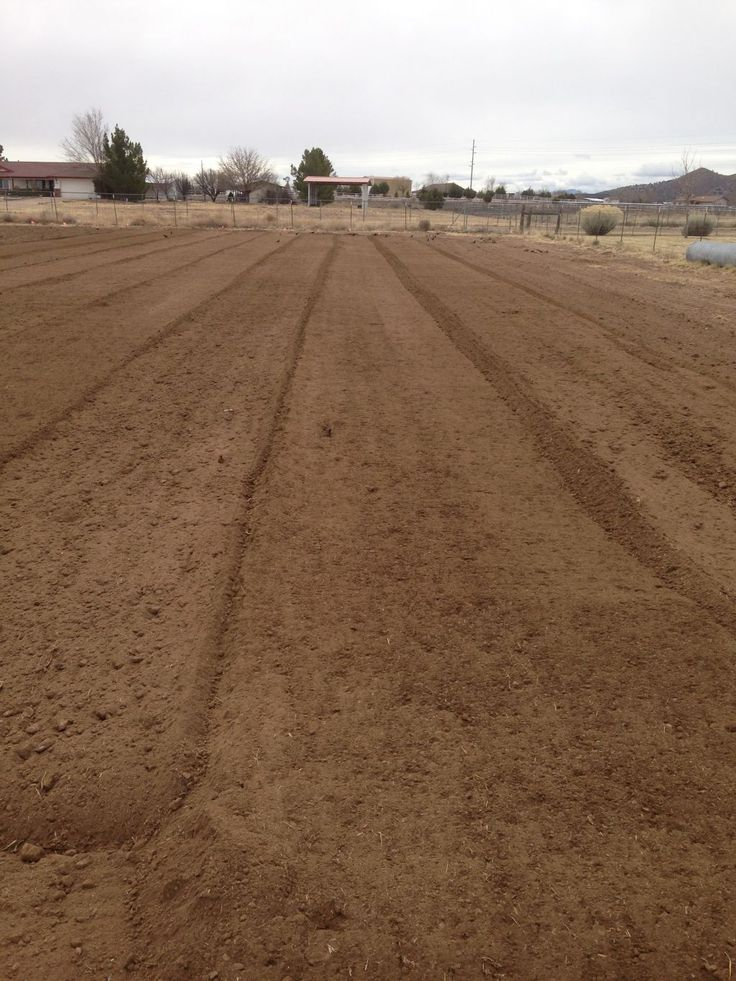 freshly tilled field - ready for plants