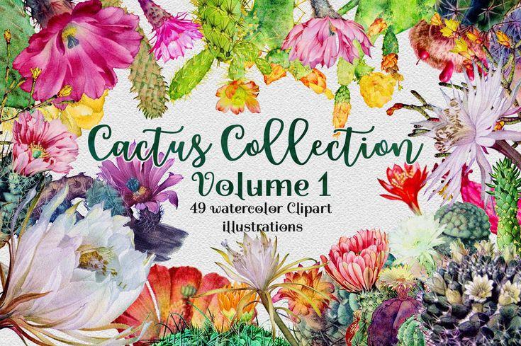 Watercolor Floral Cactus Clipart | Botanical Cacti & Flowers Digital Illustrations | Watercolour Cactus Graphics Pretty Plants Clip Art by GraphicBrat on Etsy https://www.etsy.com/uk/listing/551342171/watercolor-floral-cactus-clipart