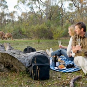 Breakfast with the Kangaroos | The Louise - Luxury Accommodation in the Barossa Valley