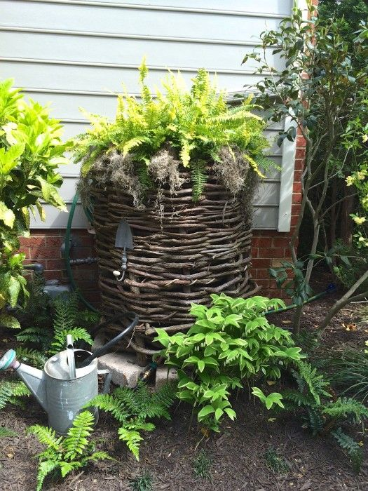Rain Barrel cover up disguise for ugly plastic ones.