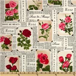Timeless Treasures Romantic Rose Frames Cream