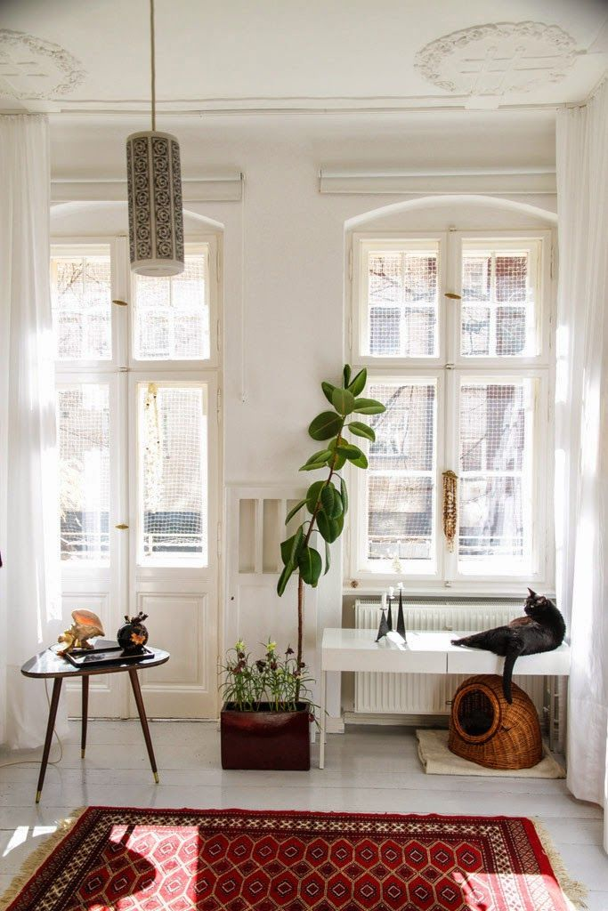 Eclectic home styling with white walls, mid century modern accents, plants