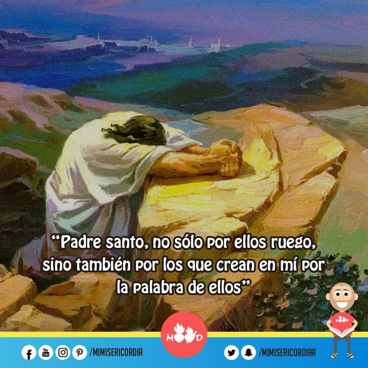 """""""Padre santo, no sólo por ellos ruego, sino también por los que crean en mí por la palabra de ellos"""". (Jn 17, 20-26)"""